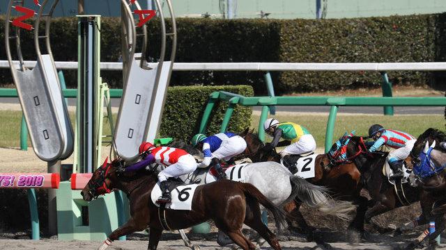 競馬 特徴 川崎 川崎ダート900m傾向分析やコース解説・逃げ馬が圧倒的に有利なコースバイアス|【競馬単複】MOSTLY CORRECT